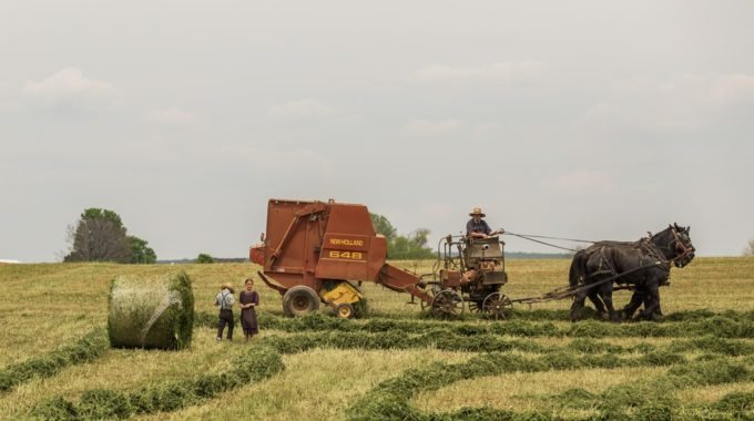 Farmers Farm Things